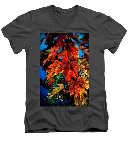 Fall Reds Men's V-Neck T-Shirt by Robert Bales
