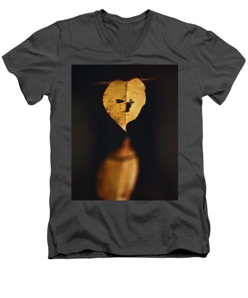 Fall Reflections Men's V-Neck T-Shirt by Eduard Moldoveanu
