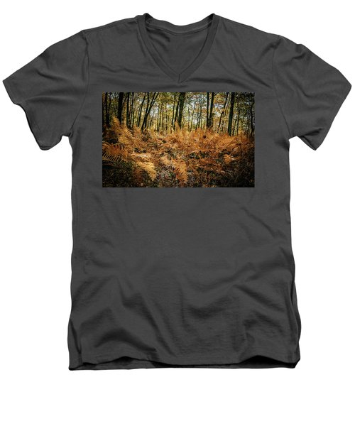 Fall Rust Men's V-Neck T-Shirt