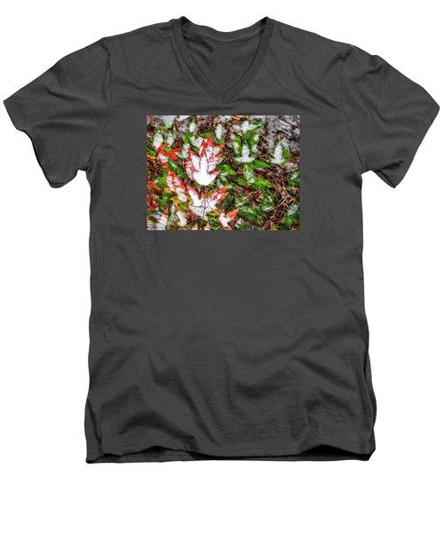 Fall Snow Men's V-Neck T-Shirt