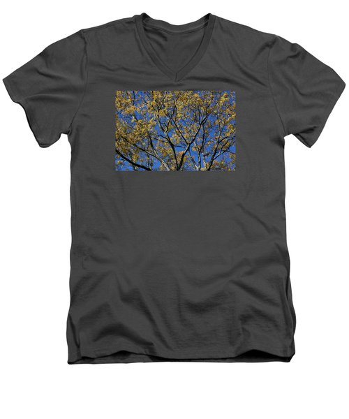 Men's V-Neck T-Shirt featuring the photograph Fall Splendor And Glory by Deborah  Crew-Johnson
