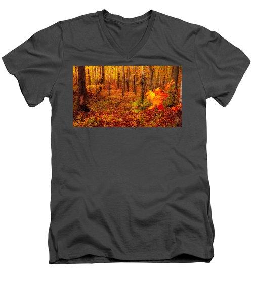 Fall Sugar Bush Men's V-Neck T-Shirt