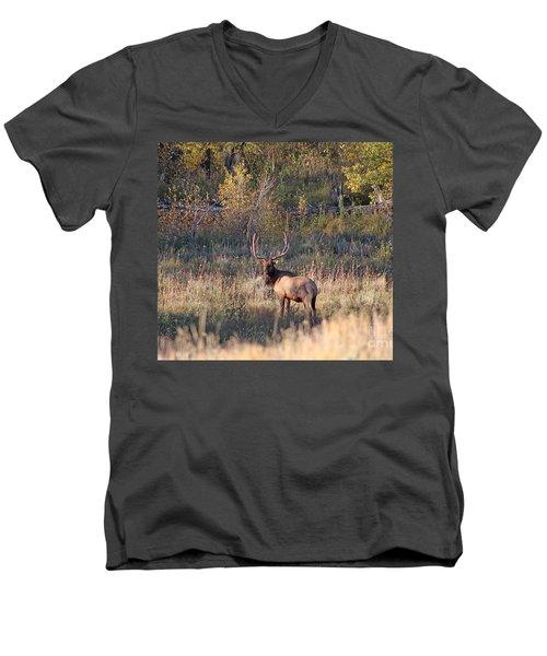 Fall Sunset Satellite Bull Elk Men's V-Neck T-Shirt
