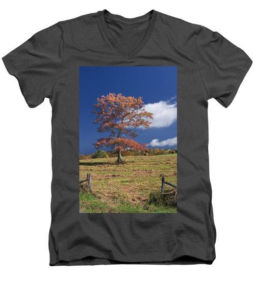 Fall Tree Men's V-Neck T-Shirt