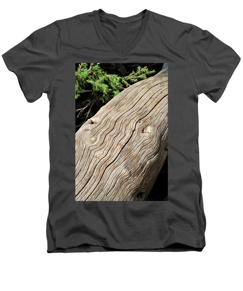 Fallen Fir Men's V-Neck T-Shirt
