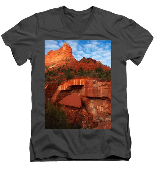 Men's V-Neck T-Shirt featuring the photograph Fallen by James Peterson