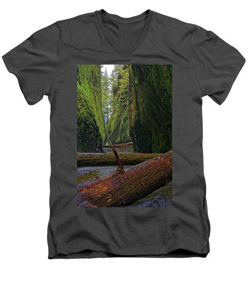 Fallen Men's V-Neck T-Shirt by Jonathan Davison