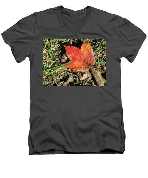 Fallen Leaf Men's V-Neck T-Shirt by Michele Wilson