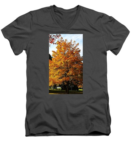 Fallish Yellowish Men's V-Neck T-Shirt by Jana E Provenzano