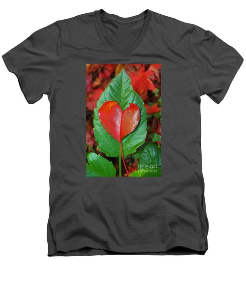 Fall's Vibrant Contrast Men's V-Neck T-Shirt