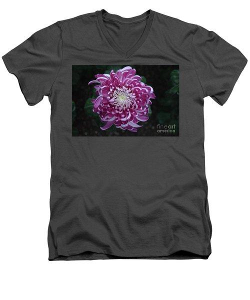 Fancy Chrysanthemum In Pink Men's V-Neck T-Shirt