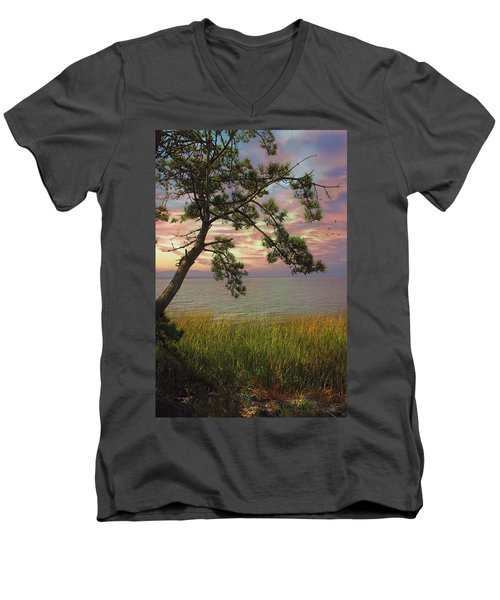 Farewell To Another Day Men's V-Neck T-Shirt
