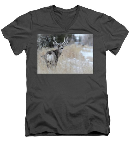 Father Deer Men's V-Neck T-Shirt