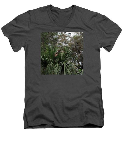 Feather 8-10 Men's V-Neck T-Shirt by Skip Willits