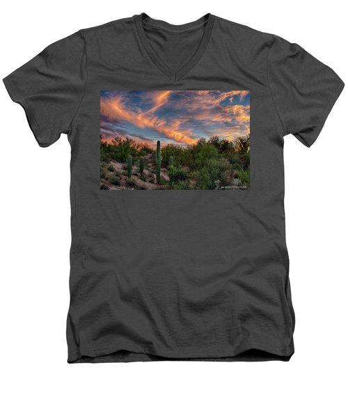 Feathers Men's V-Neck T-Shirt