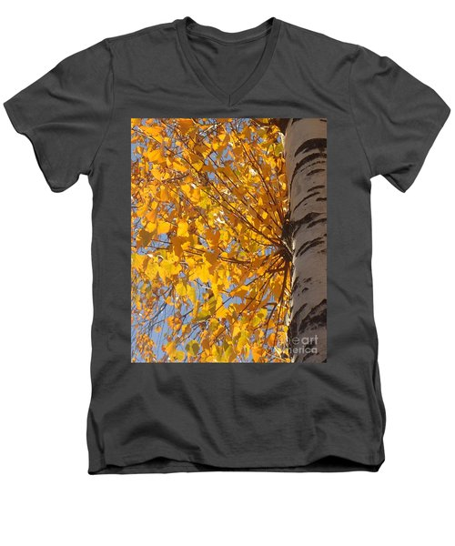 Feathery Fan Of Leaves Men's V-Neck T-Shirt