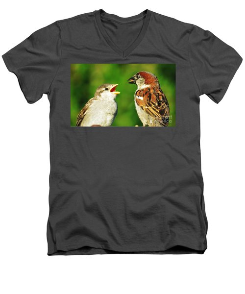 Feeding Baby Sparrows 2 Men's V-Neck T-Shirt by Judy Via-Wolff