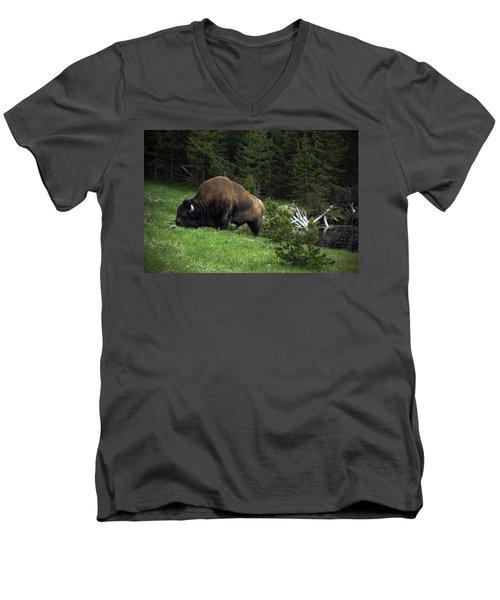 Men's V-Neck T-Shirt featuring the photograph Feeding Buffalo by Jason Moynihan