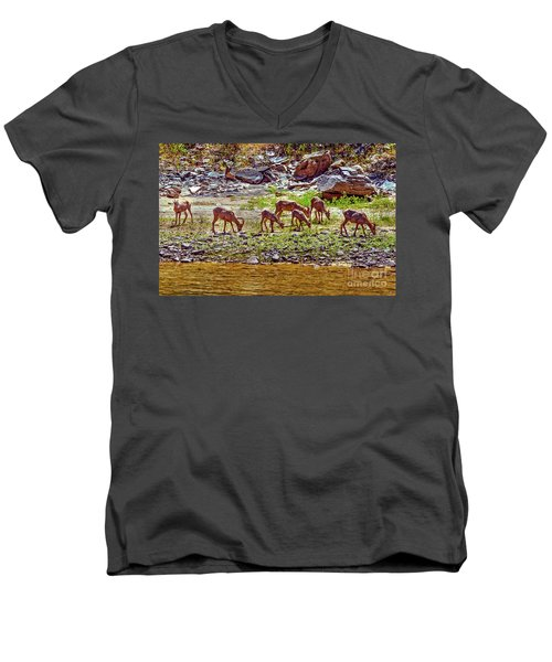 Feeding Mountain Sheep Men's V-Neck T-Shirt by Robert Bales