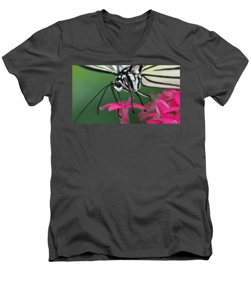 Men's V-Neck T-Shirt featuring the photograph Feeding Rice Paper by Richard Bryce and Family