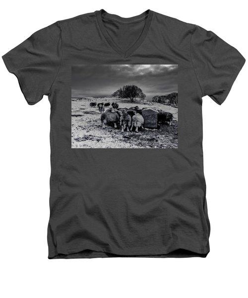 Feeding Time Men's V-Neck T-Shirt by Keith Elliott
