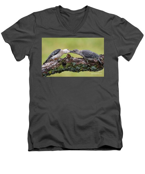 Feeding Time Men's V-Neck T-Shirt by Ricky L Jones