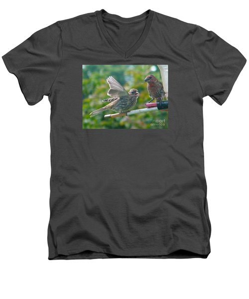 Female And Male Crossbills    August  Indiana Men's V-Neck T-Shirt