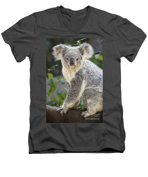 Female Koala Men's V-Neck T-Shirt by Jamie Pham