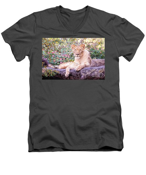 Female Lion Resting Men's V-Neck T-Shirt