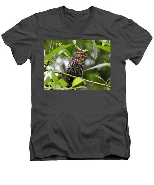 Female Redwinged Blackbird Men's V-Neck T-Shirt