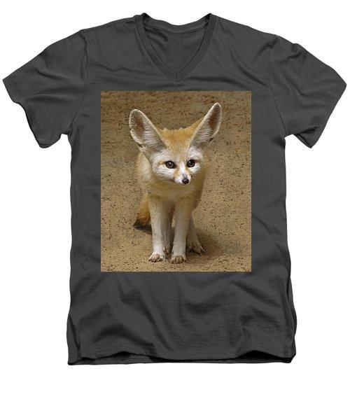 Fennec Fox Men's V-Neck T-Shirt