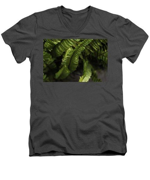 Fern Men's V-Neck T-Shirt