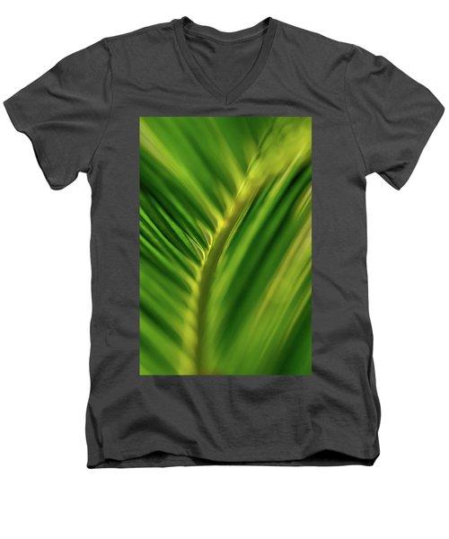 Fern Men's V-Neck T-Shirt by Jay Stockhaus