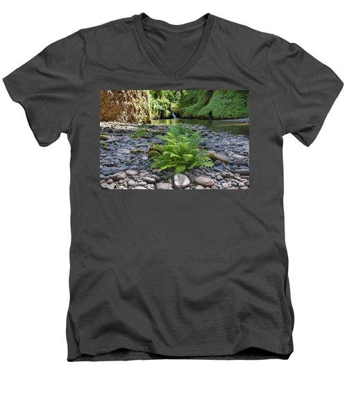 Ferns Along Banks Of Eagle Creek Men's V-Neck T-Shirt