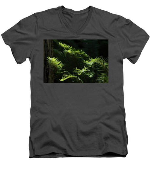 Ferns In The Forest Men's V-Neck T-Shirt by Keith Boone