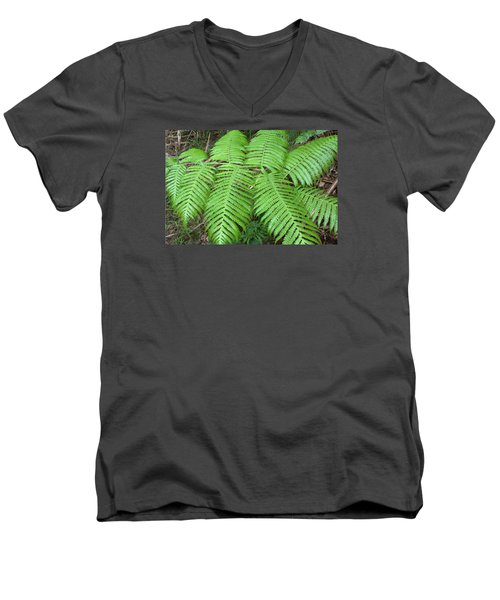 Men's V-Neck T-Shirt featuring the photograph Ferns by Karen Nicholson