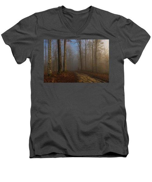 Foggy Morning In The Forest Men's V-Neck T-Shirt