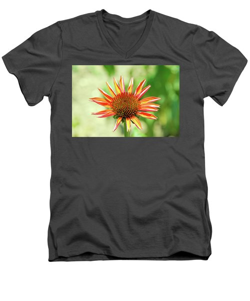 Men's V-Neck T-Shirt featuring the photograph Fibonacci by David Chandler