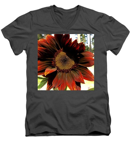 Fibonacci Hues Men's V-Neck T-Shirt
