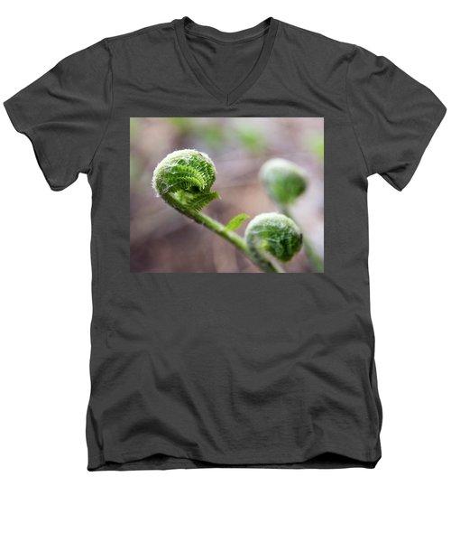 Fiddleheads Men's V-Neck T-Shirt