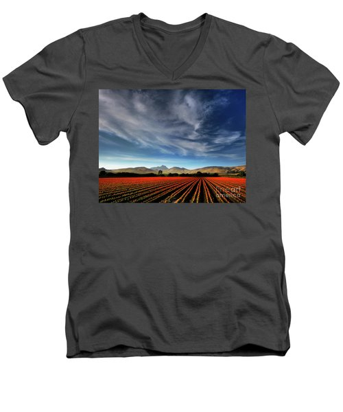 Field Of Color Men's V-Neck T-Shirt