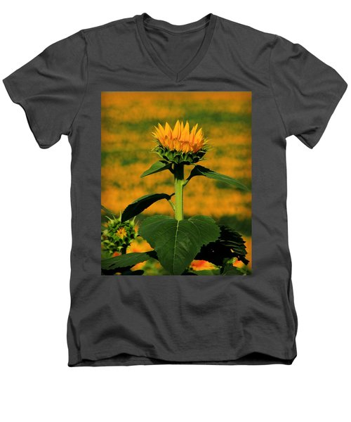 Men's V-Neck T-Shirt featuring the photograph Field Of Gold by Chris Berry