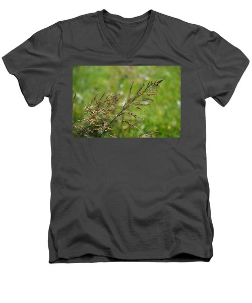 Fields Of Grain Men's V-Neck T-Shirt