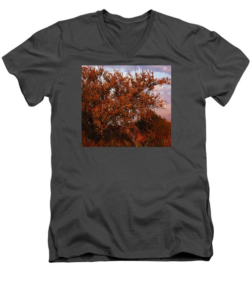 Fiery Elm Tree  Men's V-Neck T-Shirt