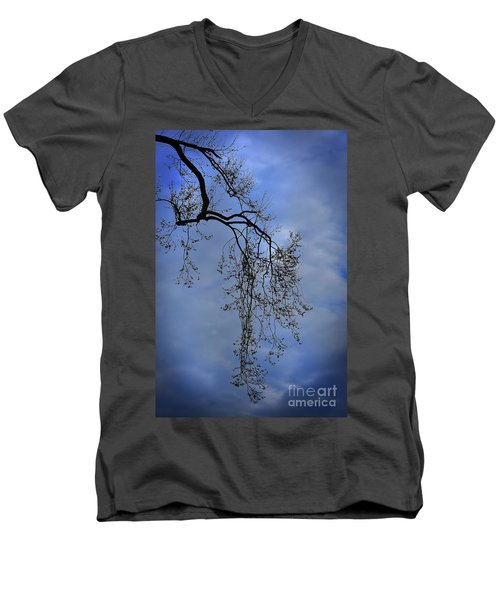 Men's V-Neck T-Shirt featuring the photograph Filigree From On High by Skip Willits