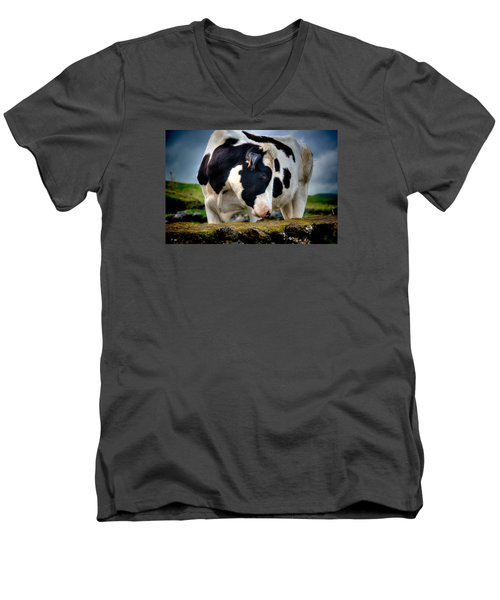 Fine Art Colour-136 Men's V-Neck T-Shirt
