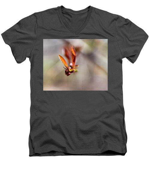 First Leaves Men's V-Neck T-Shirt