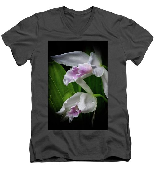 First Orchid At The Conservatory Of Flowers Men's V-Neck T-Shirt