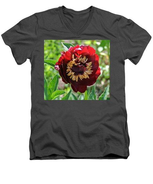 First Peony Bloom Men's V-Neck T-Shirt by Marsha Heiken