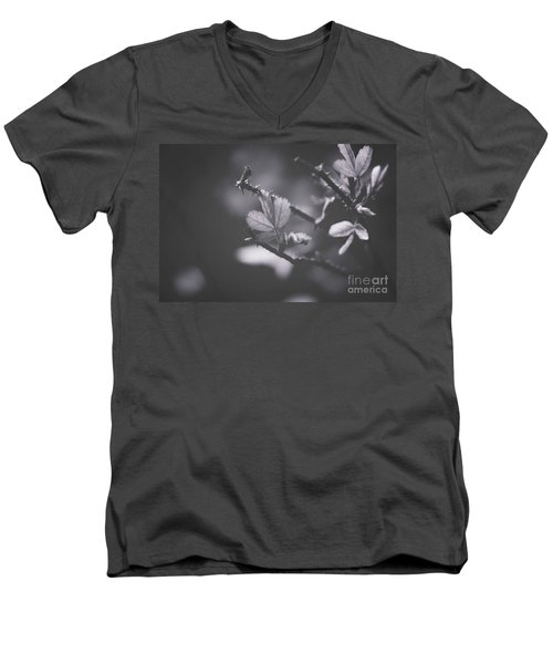 First Signs Of Spring -georgia Men's V-Neck T-Shirt